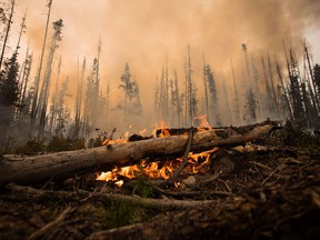 The wildfires in British Columbia turned a red-hot spotlight on the risks of fire and smoke damage for commercial and residential properties.