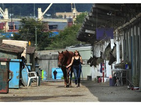 Glen Todd, owner-trainer of North American Thoroughbred Horse Co., has quietly extended an interest-free million dollar loan to fund purse money and keep the races going at Vancouver's Hastings Racecourse through the end of August as the industry struggles to recover from the COVID-19 pandemic.
