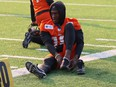 The addition of Dominique Rhymes from the Ottawa RedBlacks has given the BC Lions' already potent offence two 1,000 yard receivers.