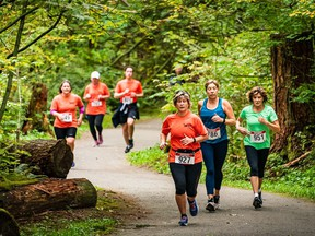 The inaugural Rainforest Trail Run in 2019 drew about 400 participants.