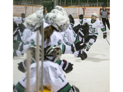 The University of Saskatchewan Huskies celebrate a goal against the University of Lethbridge Pronghorns in CIS women's hockey action at Rutherford Rink, January 9, 2016.