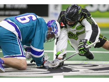 Saskatoon Rush transition Jeremy Thompson takes a face off against Rochester Knighthawks defender Dylan Evans in NLL first half action on Friday, February 19th, 2016.