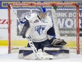 Saskatoon Blades goalie Brock Hamm made 22 saves in downing  the Prince Albert Raiders 2-1.