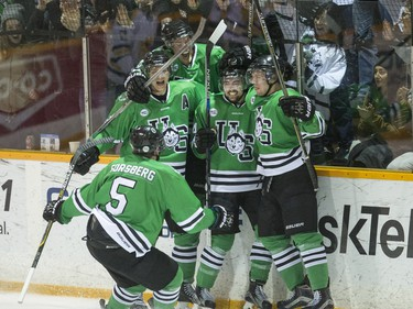 University of Saskatchewan Huskies celebrate a goal against the University of Alberta Golden Bears in third period CIS Men's Hockey playoff action on March 5, 2016.