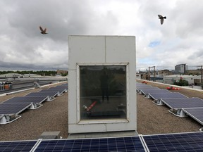 The Saskatchewan Environmental Society's Solar Co-operative unveiled its first solar panel installation, on the roof of the Two Twenty, Tuesday morning.