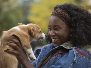 """Kirby Howell-Baptiste stars in """"A Dog's Purpose."""""""