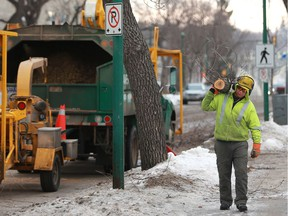 Davey Tree Service workers trim back trees away from power lines on 24th Street East in Saskatoon, SK on March 20, 2018.