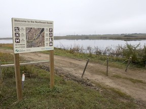 Saskatoon city council's transportation committee endorsed two measures to try to protect wildlife in the Northeast Swale as it prepares to open roadways that will connect to the new Chief Mistawasis Bridge in October.