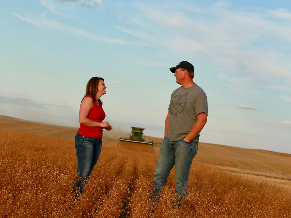 State of Agriculture: Sask. farmers dig into fresh soil for sustainable agriculture practices