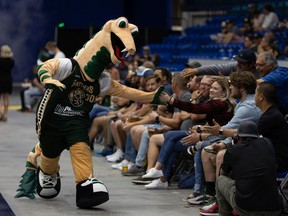 Fans are back in the stands at SaskTel Centre for a Saskatoon Rattlers game after COVID-19 health restrictions have eased. Photo taken in Saskatoon on July 12, 2021.