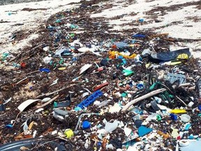 Plastic and other garbage on a beach in the Bahamas. (Bahamas Plastic Movement/Instagram)