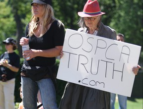 Animal rights activists opposing the OSPCA,including ROAR, (Reform Ontario Animal Rights) gathered at Queen's Park demanding  accountability for the OSPCA in 2014.