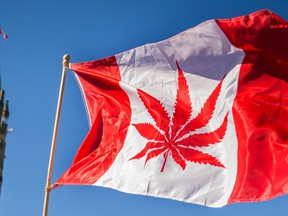 In this file photo taken on April 20, 2016, a woman waves a flag with a marijuana leaf on it next to a group gathered to celebrate National Marijuana Day on Parliament Hill. (AFP Photo)