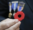 Sg. David Ratcliffe sells poppies in  downtown Toronto on Friday November 8, 2019.