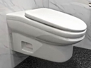 The StandardToilet has a throne with a 13-degree slant that will prevent people from taking long bathroom breaks. (StandardToilet)