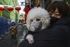 A woman and her dog both wear protective masks as they stand in the street in Beijing, China on Feb. 7, 2020. (Kevin Frayer/Getty Images)