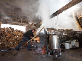 In this file photo taken on March 31, 2020, a worker is filling the evaporator oven with logs at the Constantin Gregoire Sugar shack in Saint-Esprit, Quebec. - Canada's unemployment rate shot up to 7.8 percent last month, its biggest monthly increase in more than 40 years, as the economy bled jobs because of the coronavirus pandemic, the government said on April 9, 2020. (Photo by Benedicte Brocard / AFP) (Photo by BENEDICTE BROCARD/AFP via Getty Images)