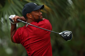 Tiger Woods plays his shot from the 13th tee during The Match: Champions For Charity last weekend.  Tiger is healthy and should be a big threat this summer.