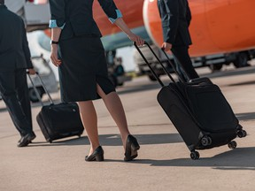 A flight attendant wheels her luggage.