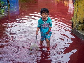 A girl walks through a flooded road with red water due to the dye-waste from cloth factories, in Pekalongan, Central Java province, Indonesia, Saturday, Feb. 6, 2021.