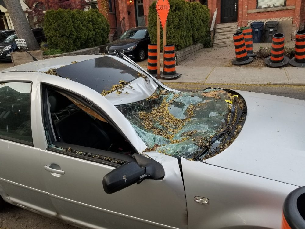 Parking ticket issued to caved-in car rescinded