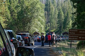 Traffic forms at the Big Oak Flat entrance as visitors arrive for the Fourth of July weekend in Yosemite National Park, California, U.S., July 2, 2021.