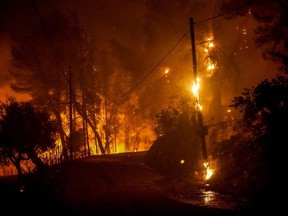 Flames engulf the forest near ancient Olympia in western Greece on Wednesday, Aug. 4, 2021.