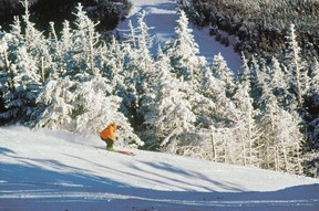 In this undated photo provided by the Adirondack Regional Tourism Council, a skier heads down Whiteface Mountain near Lake Placid, N.Y. (Courtesy Adirondack Regional Tourism Council)