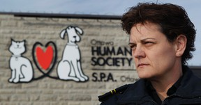 Miriam Smith, Rescue and Investigation Services Inspector for the Ottawa Humane Society, poses for a photo in Ottawa Thursday January 26. 2012.  Smith is investigating a cat killing in Ottawa. (TONY CALDWELL/OTTAWA SUN)
