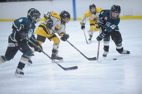Waterford's Keegan Scott (centre) hustles past Cayuga's Benjamin Metcalfe and Dale Schweyer during the atom game in Waterford on Nov. 19. Scott netted three goals in the game, which Waterford won 5-1. (SARAH DOKTOR Simcoe Reformer)