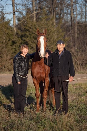 Carolyn Nugent and her father Lloyd stand with Camden Dancer, one of three champion Standardbred horses that they own and show together. All three of the father/daughter team's horses took home top prizes from this year's Royal Winter Fair in Toronto.