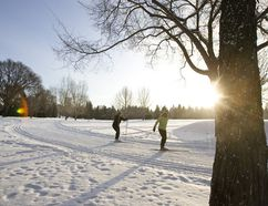 Edmonton is utilizing its strategy to become a winter-friendly city.