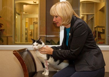 Prime Minister Stephen Harper's wife Laureen Harper pets Joey during her visit to the Edmonton Humane Society, in Edmonton, Alberta on Thursday, October 25, 2012.  Joey, who is up for adoption, nearly lost his leg to a severe infection.  AMBER BRACKEN/EDMONTON SUN/QMI AGENCY