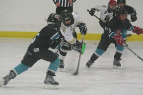 The Novice 3 Devon Drillers claimed the league gold banner on Sunday, Mar. 24, beating out Westlock for the top spot. More DMHA photos on page 11.