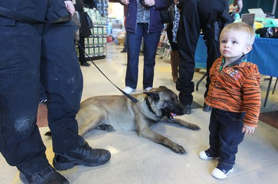 16-month-old Caleb Lis looks to his mother for permission to pet police dog Mya at the Petland on Regent Avenue on Sat., April 13, 2013 in Winnipeg, Man. Petland has set up a international fundraiser for April, with all proceeds donated to the Winnipeg Police Service's Canine Unit Retirement and Vest Fund. Kevin King/Winnipeg Sun/QMI Agency