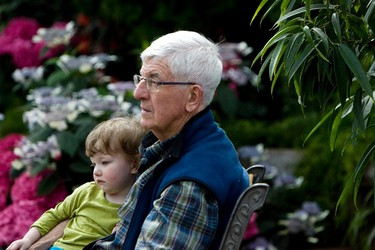 Mireille Hanson, 3, rests with her grandfather Gerry Hanson in the feature pyramid at the Muttart Conservatory in Edmonton, Alta., on May 12, 2013. The museum held special Mother's Day activities Ian Kucerak/Edmonton Sun/QMI Agency