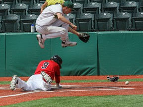 Sherwood Park Midget AAA Dukes pitcher Reign Letkeman hurdles over a Red Dawgs baserunner at home plate to get to the ball during one of a pair of recent losses to the Dawgs at Tourmaline Field in Okotoks.Photo Courtesy Michael Moskaluk