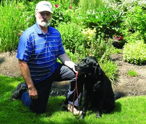 Jim Garrah and his guide-dog-in-training, Civitan the Third, get ready for an outing. Canadian Guide Dogs for the Blind is currently looking for volunteers to provide loving homes for future guide dogs, just like Civitan.            Wayne Lowrie - Gananoque Reporter