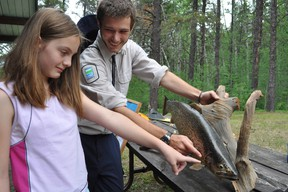 After a hiatus, Kettle Lakes Provincial Park is reinstating its popular Heritage Weekend events which combines recreational and educational programming. Back when this program was last offered in 2011, Kaitlyn St. Jacques, seen here received a lesson about fish during a workshop from Kettle Lakes Provincial Park natural heritage educator Phillipe Reid.