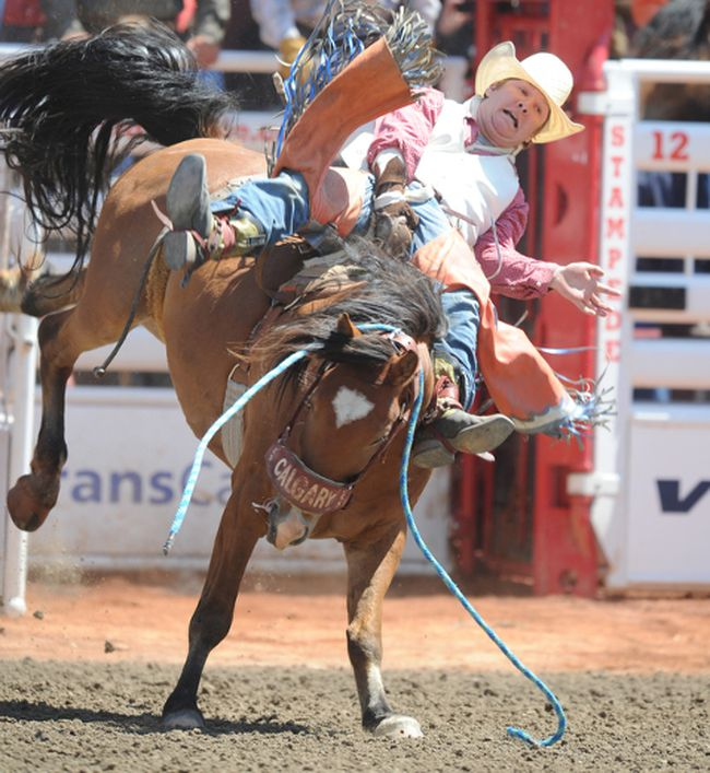 Jordan Sawnson from Belmont, MB on the horse Up and Awake in the Novice Saddle bronc event at the Calgary Stampede in Calgary, Alta. on July, 11,2013 . 