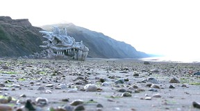 A dragon skull was left on Chartmouth beach to promote the third season premiere of Game of Thrones on Blinkbox. (YouTube screen grab)