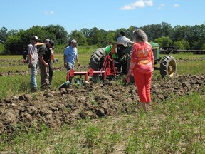 Judges watch as a competitor plows a straight furrow in competition at Saturday's annual county plowing match