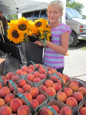 The Scotview Orchards booth at the Simcoe Farmers Market will be working overtime during the Mumford & Sons' concert weekend at the Norfolk County Fairgrounds Aug. 23-24. Looking forward to long hours helping out is Makayla VanBrugge of Scotland.  (MONTE SONNENBERG Simcoe Reformer)
