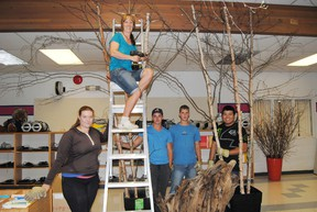 From left: Brianne Ball, Leanne Shand, Zack Buch, Shawn Finnestad and Steven Huang, David Roszko. Shand, Pat Hardy educational assistant leads a group of former Pat Hardy graduates and Pembina Pipeline summer students prepare the school's library for opening day. Barry Kerton | Whitecourt Star