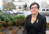 Coun. Jenny Gerbasi at the northeast corner of the intersection of Portage Avenue and Main Street. Gerbasi has asked to begin discussions on opening the intersection to pedestrians in 2017 when a 30-year deal to keep it closed ends. (KEVIN KING/Winnipeg Sun)