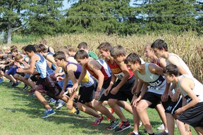 Junior Boys team on starting line from left to right are Tanner Stevenson, Chris Enders, Michael Schraa, Wes Klages.