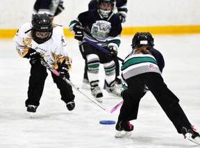 Emma Lincoln (42) of the Mitchell U10 ringette team reaches for the ring with this London opponent during Western Region action last Thursday, Nov. 14 in Mitchell. The local Stingers fell behind 5-0 but rallied to 5-3 before losing, 7-3. ANDY BADER/MITCHELL ADVOCATE