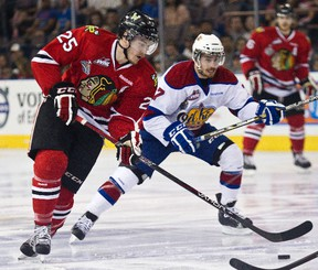 The last time the Oil Kings and Winterhawks met was during the league championships in May. (Codie McLachlan, Edmonton Sun)