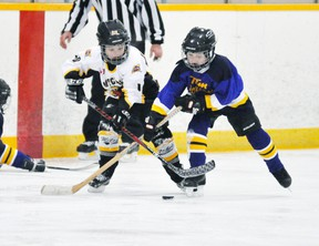 Jordan Visneskie (10) of the Mitchell Tyke 1 team battles this BCH opponent for the puck at the BCH blueline during their game last Sunday, Dec. 15. The Meteors won, 4-1. ANDY BADER/MITCHELL ADVOCATE