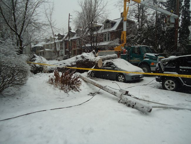 Toronto Hydro workers deal with ice storm aftermath on Dec. 25, 2013. (Garnet Fulton photo)